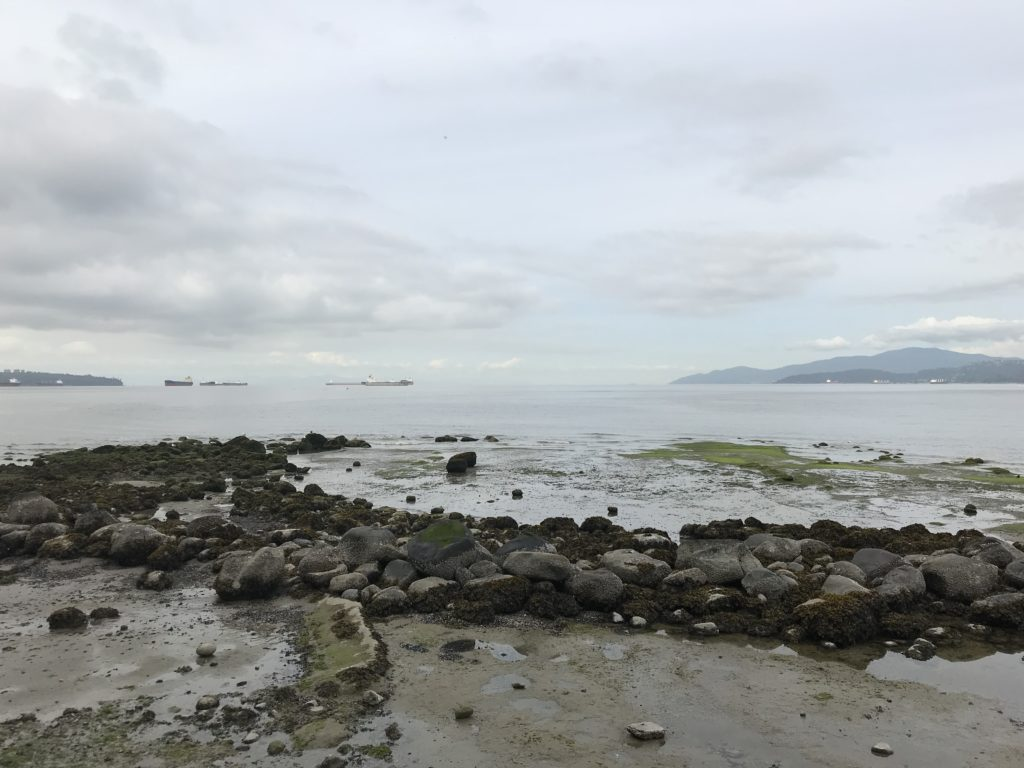 View of the Juan de Fuca strait from Stanley Park with missy rocks in the foreground