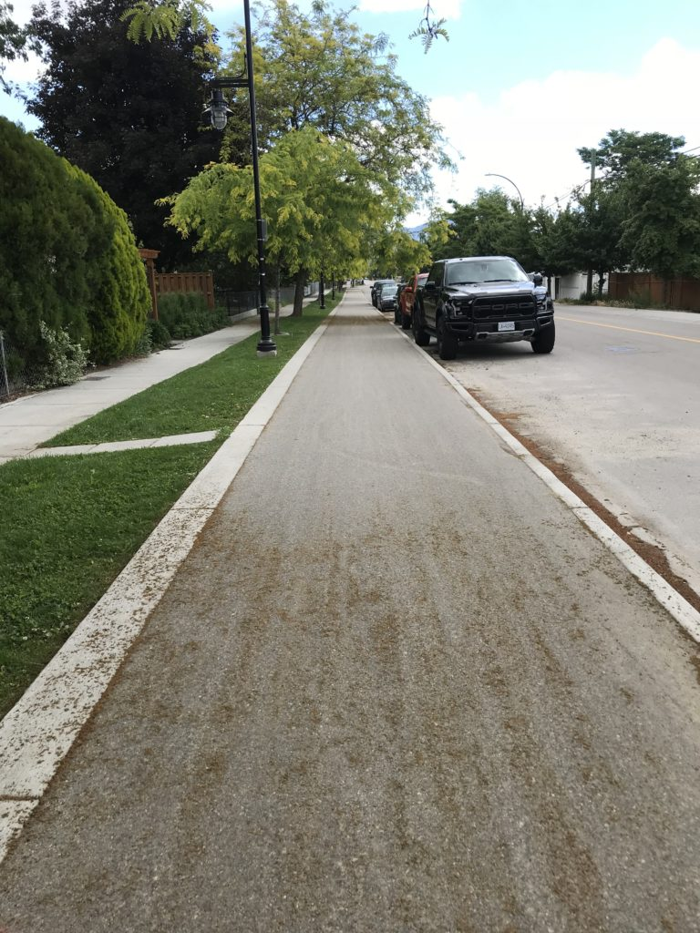 A left side bike trail between the sidewalk and parked cars